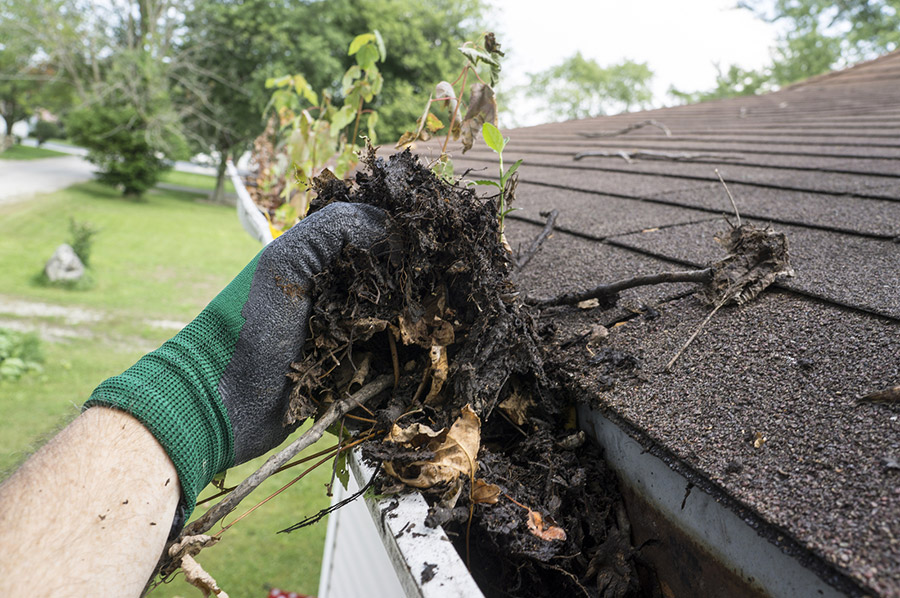clogged gutters need gutter cleaning