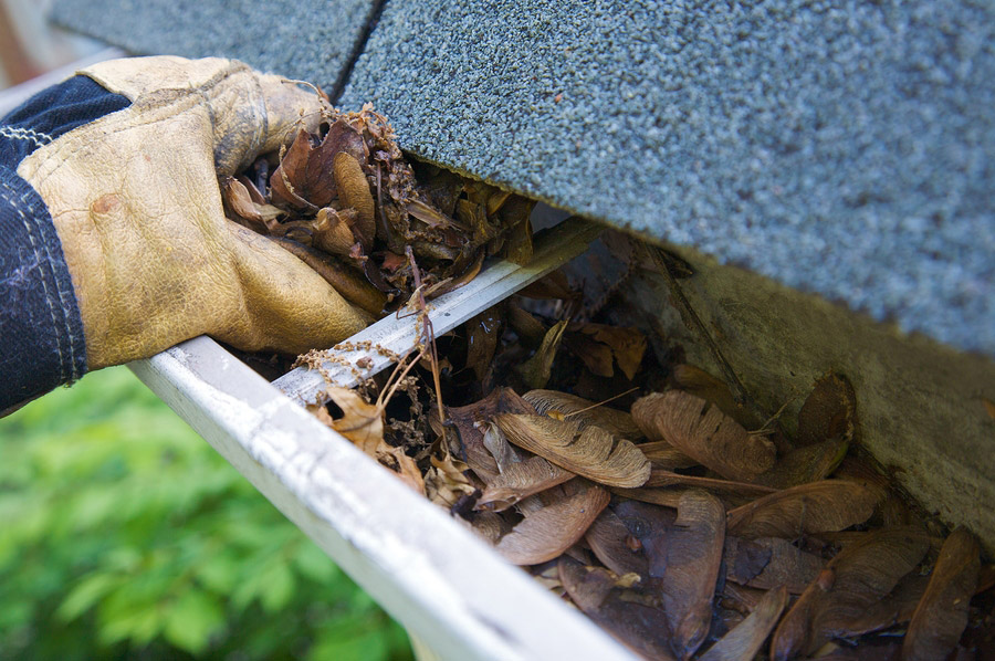 clogged gutters are a dirty job